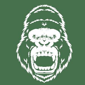 gorilla-img2